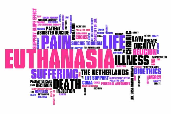 Alternative Options to Euthanasia